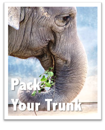Pack Your Trunk